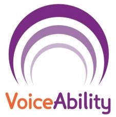 VoiceAbility smaller
